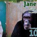 Jane Goodall 01