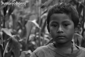 Más sobre su obra fotográfico de Barro podrá encontrarse en su web http://antoniobarro.wix.com/fotografia