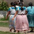 Canadá abrió un programa piloto con Guatemala en 2003 en el que intervino la OIM, para ubicar a jornaleras. Foto: Cimac