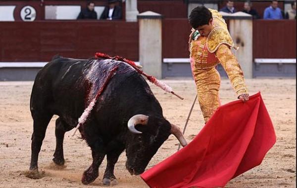 Sacrifico público de animales. Foto- Cortesía