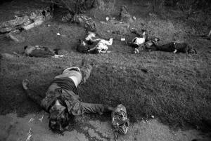 Zapatistas masacrados al ser superados por la capacidad de fuego del Ejército Mexicano en enero de 1994. Foto: Marco A. Cruz/Proceso/Chiapas PARALELO.