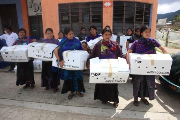 Mujeres reciben paquetes de aves y conejos como parte de la Cruzada Nacional Contra el Hambre. Foto: Icoso
