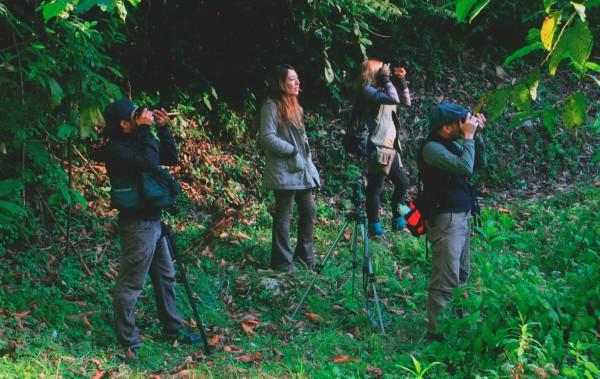 Capturando el atardecer entre los árboles de la Reserva de la Biósfera El Triunfo. Foto: Isaín Mandujano