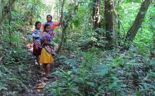 Habitantes de la Selva. Foto Ángeles Mariscal/Chiapas PARALELO
