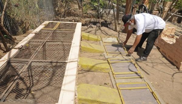 Criadero de iguanas en Juchitán, Oaxaca. Foto: Diana Manzo/Pagina3.mx