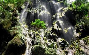 Cascadas en las zonas selvaticas chiapanecas. Foto: CONANP