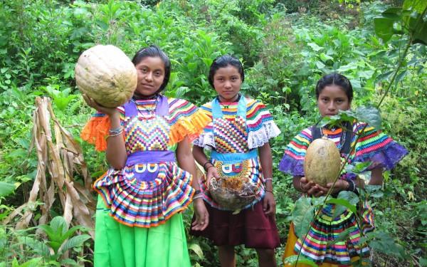 Las mujeres de maíz en la selva de Chiapas. Foto: Ángeles Mariscal/Chiapas PARALELO