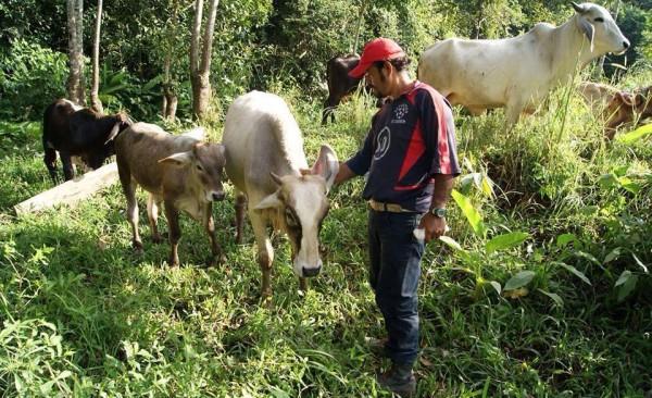 Galeano, zapatista asesinado el pasado 2 de mayo por paramilitares en la comunidad de La Realidad. Homenaje este 24 de mayo en esta comunidad de la selva fronteriza, y actos de apoyo en muchas partes del mundo. Foto: Desinformémonos.