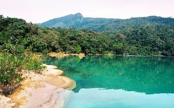 Selva Lacandona. Foto: Conanp