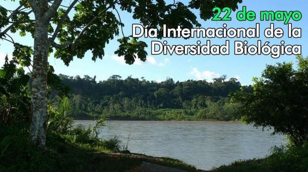 Hoy 22 de mayo: Día Internacional de la Diversidad Biológica
