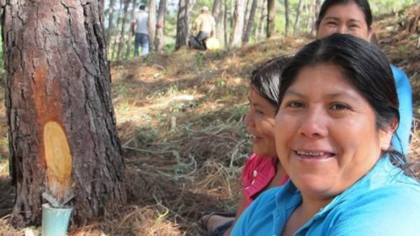 Campesinas habitan en el Área Natura de La Sepultura. Foto: Ángeles Mariscal/Chiapas PARALELO