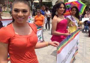 marcha orgullo gay (19)