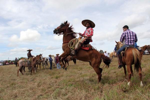 Charro haciendo suertes durante la cabalgata de Comitán. Foto: Elizabeth Ruiz