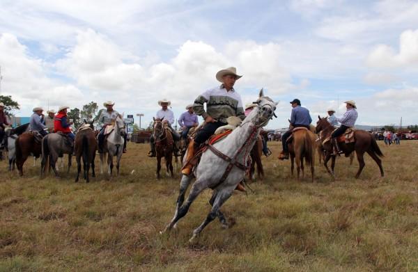 En el campo los caballos son utilizados para ayudarse en el trabajo diario. Foto: Elizabeth Ruiz