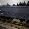 Tren con migrantes