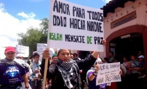 Niño musulmán en San Cristóbal de Las Casas marcha con su consigna escrita en una pancarta,. Foto: Isaín Mandujano