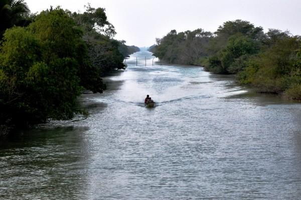 © Aguas santas, beatíficas. Pantanos de Centla, Tabasco (2012)
