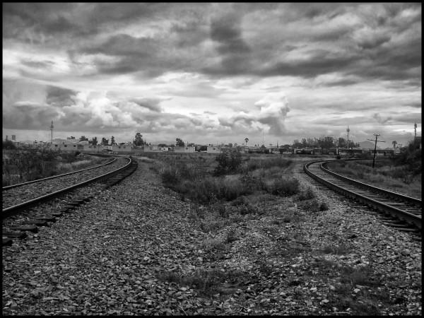 Camino migrante. Foto: Daniela Pastrana