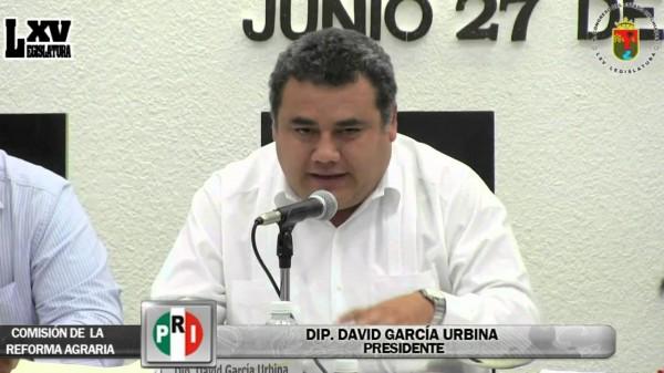Diputado del PRI, David García Urbina.