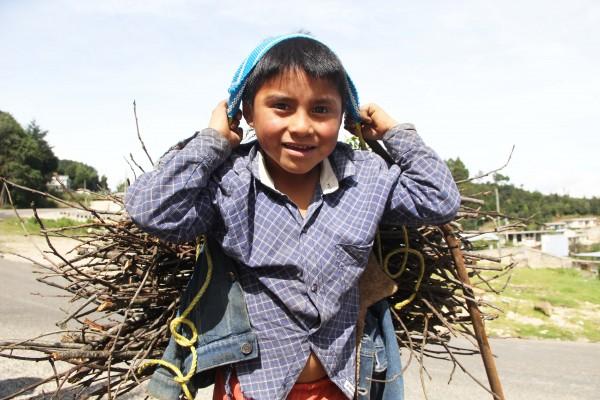 Para cocinar, para vender, para ganar unos pesos para la comida del día, la recolección de leña es una opción. Foto: Elizabeth Ruiz