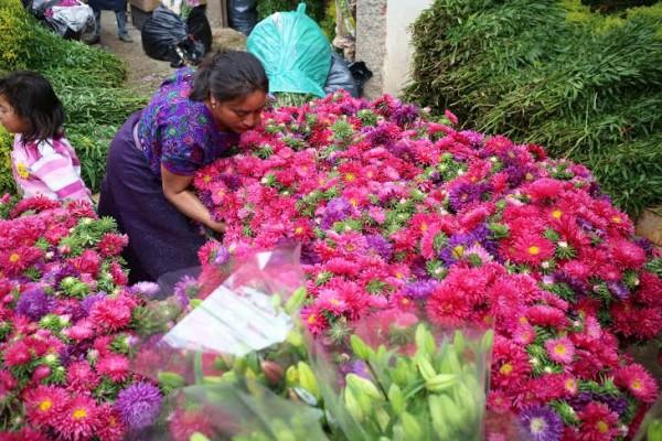 Rosas, violentas y naranjas, los colores de las flores del Día de todos los Santos.  Foto: Elizabeth Ruiz