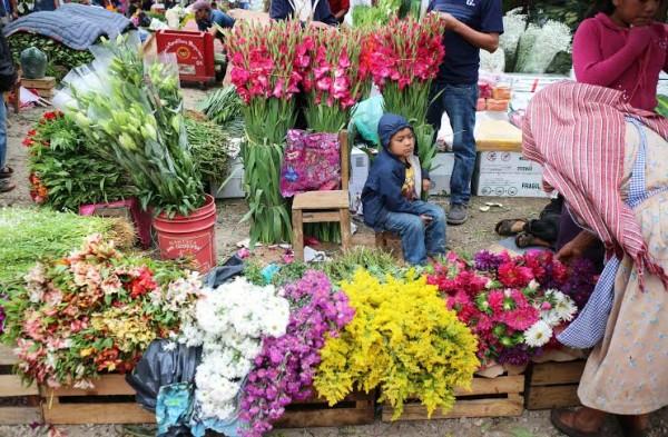 Flores para todos los Santos. Foto: Elizabeth Ruiz