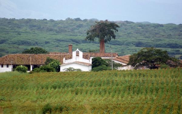 Finca La Valdiviana. Foto: sergionicolasgutierrez.com