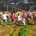 16 viveristas no han recibido el pago por su trabajo. Foto: Cesar Rodríguez