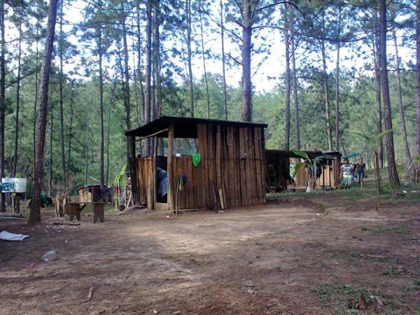 Predio El Roble, recuperado por el EZLN en 1994. Foto: Frayba