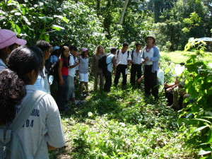 Investigadores del Ecosur en la Selva Lacandona. Foto: Ecosur
