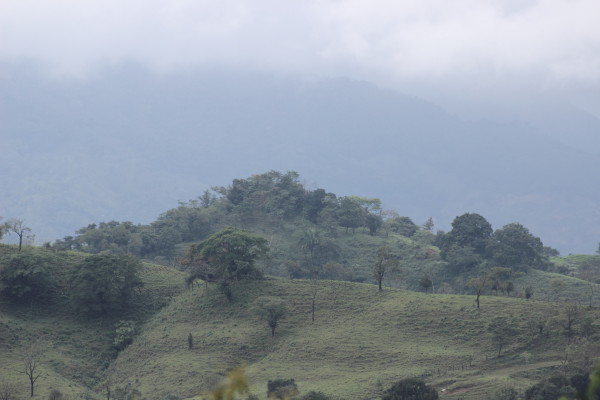 Desde hace aproximadamente 2,500 años, los zoques construyeron un vasto territorio desde el sur de México. Foto: Fermín Ledesma