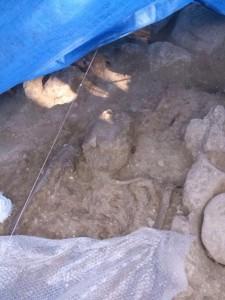 Uno de los más de 100 entierros encontrados.