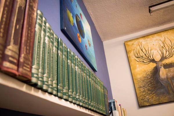 Sala de lectura de Talleres Visualizarte. Foto: Patricia Montesinos/Amalgama-Chiapas PARALELO.