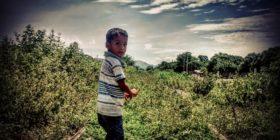 niños migrantes 4