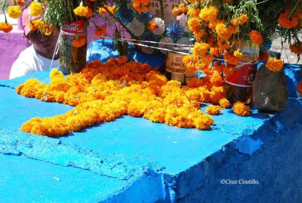 © Celeste y amarilla, flor de muertos. Tuxtla Gutiérre. 2006