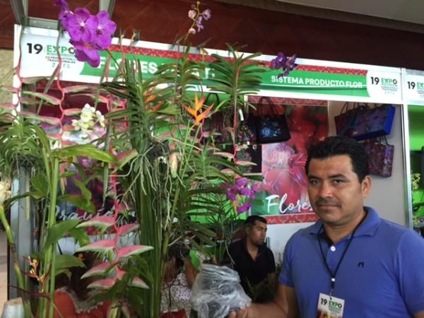 Productores de plantas exóticas. Foto: Chiapas Paralelo
