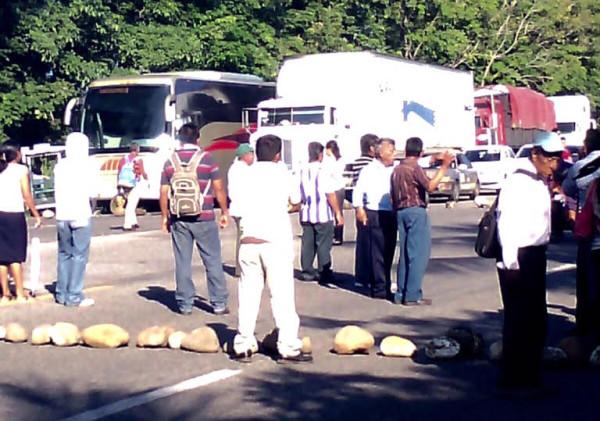 En 2012 los campesinos empezaron a alertar por la entrada de la plaga a las plantaciones de Chiapas. Foto: Cortesía