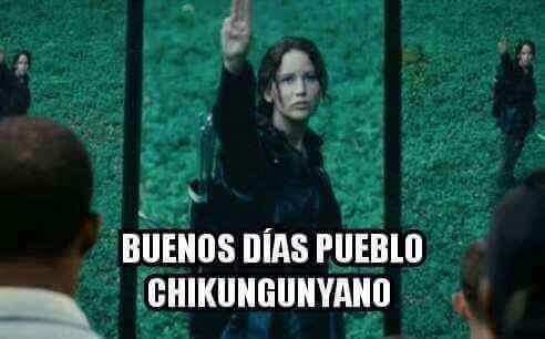 De los memes más difundidos en el año fue por el tema del Chinkunguya.