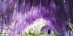 Imagen: turismo.infoclima.com