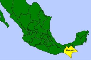 Lo único bueno para 2017 es que nadie espera algo bueno para el desarrollo económico y social de Chiapas. El pesimismo es la marca registrada para este año turbulento, y es que, como dijera Sabina, sobran los motivos para inclinarse por la angustia.