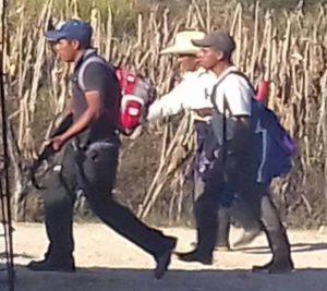 Diversos medios de comunicación han reflejado en sus páginas la creación de autodefensas en Chiapas, o los desmentidos correspondientes de ciertos grupos respecto a su participación.