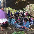 Desplazados de Chalchiuitán. Foto: Ángeles Mariscal