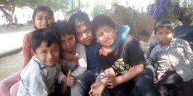 Los niños y niñas que están desplazados en Chiapas no tienen garantizado sus derechos a la educación, salud y alimentanción.
