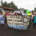 Marcha-Aniversario del FPDS el 20 de junio 2018 en Acacoyagua, Chiapas (Crédito Otros Mundos A.C.Amigos de la Tierra México) (2)