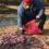 Localizan seis kilos de tubos de ensayo con sangre en un río de Cintapala (1)