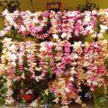 © Las famosas ensartas de flor de mayo. Tuxtla Gutiérrez. 2016.