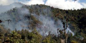 Incendio en Biósfera El Triunfo acaba con 130 hectáreas de bosque de niebla. Foto: Cortesía