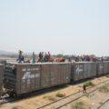 Unos mil migrantes avanzan su camino por tren a Veracruz