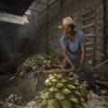 """Con la exposición """"Se llama Mezcal"""", el fotógrafo Rolando Jiménez participó en el Festival Sabores Polanco"""