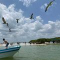 Isla Pasión. Foto: Mario Robles